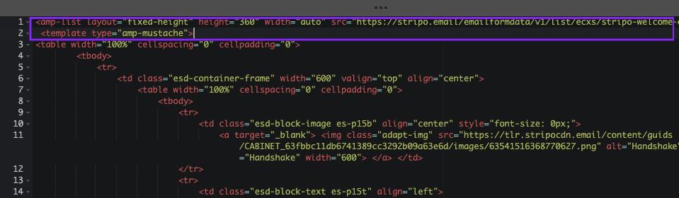 Inserting-AMP-Code