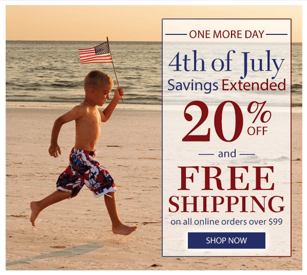 4th of July Emails Kids Carrying Flags