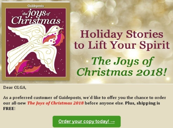 Stripo Christmas newsletters - Loyal customers