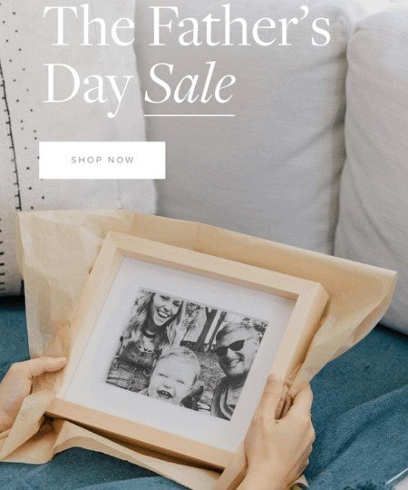 Stripo-Father's-Day-Sale