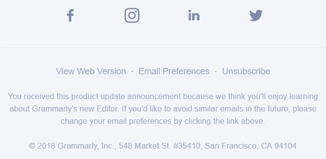 Stripo-Footer-Email-Preferences