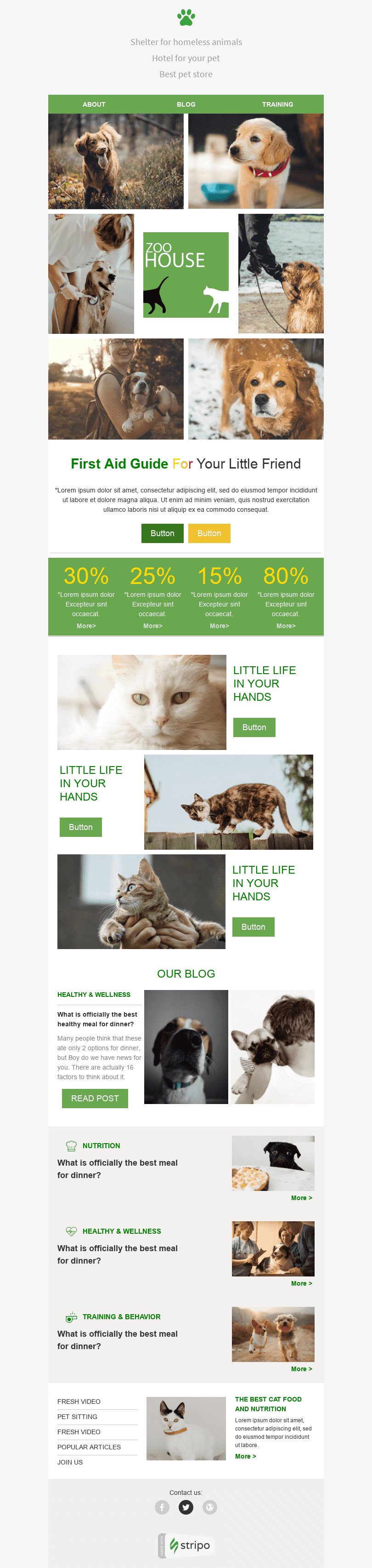 Promo Email Template «Pets Place» for Pets industry desktop view
