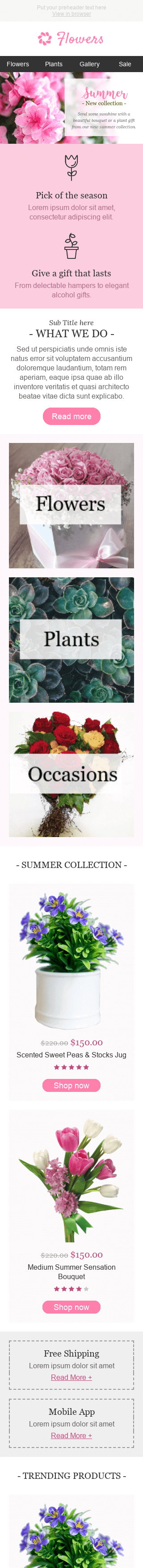 "Promo Email Template ""Special Occasion"" for Gifts & Flowers industry mobile view"