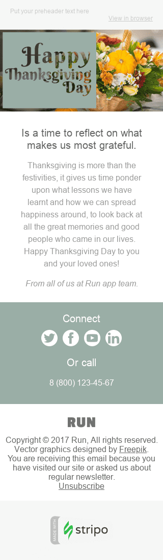 Stripo Software Holiday newsletter Thanksgiving Day email web