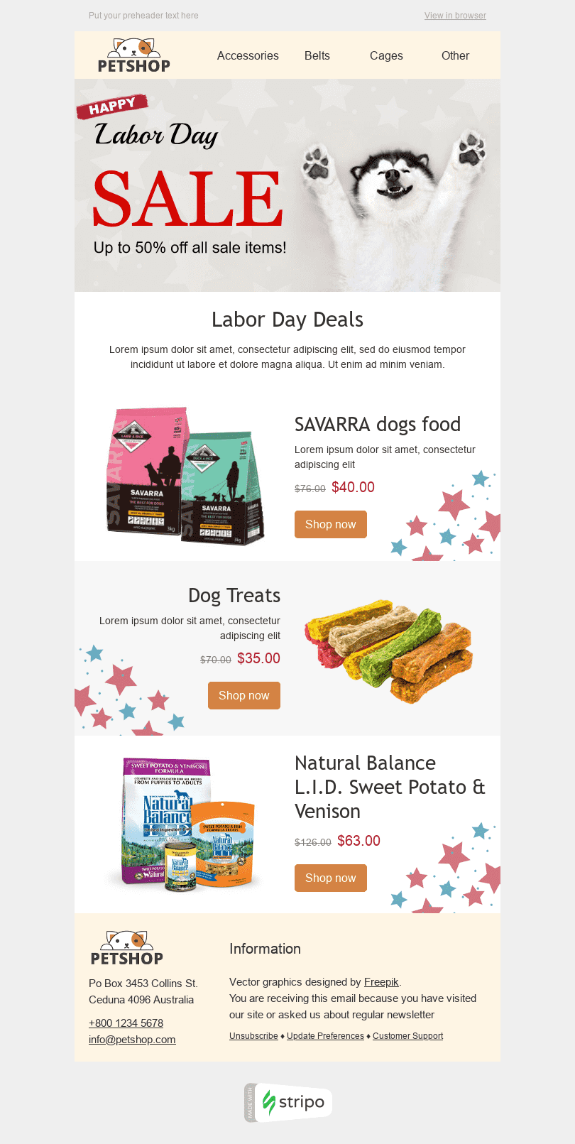 "Labor Day Email Template ""Big Sale"" for Pets industry desktop view"