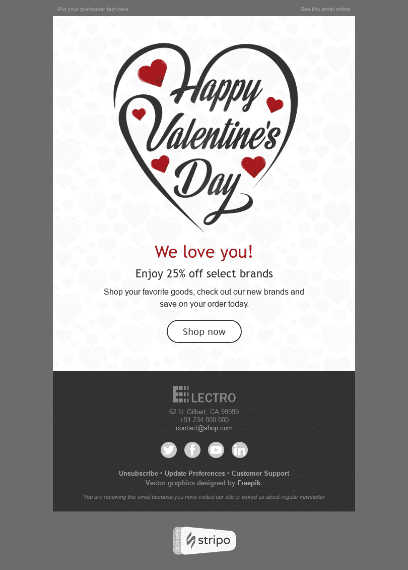 Stripo Gadgets Holiday newsletter Happy Valentine day Love Around Us email web