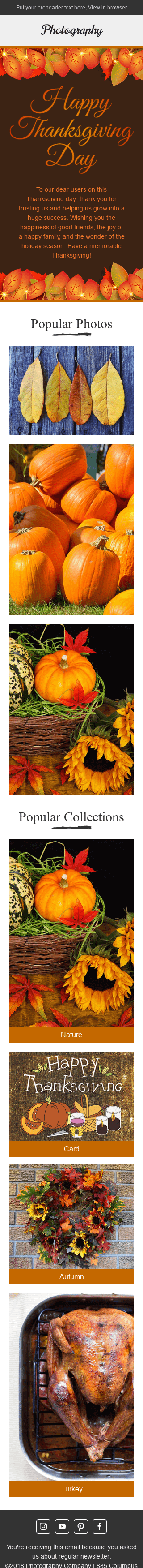 Stripo Photography Holiday newsletter Thanksgiving Day Golden Autumn email web