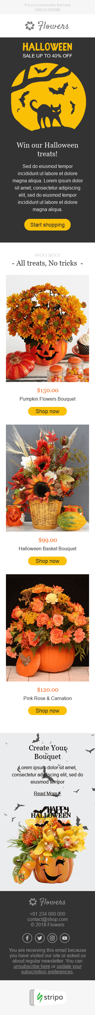 Stripo Gifts Flowers Holiday newsletter Halloween Autumn Enchantment email web