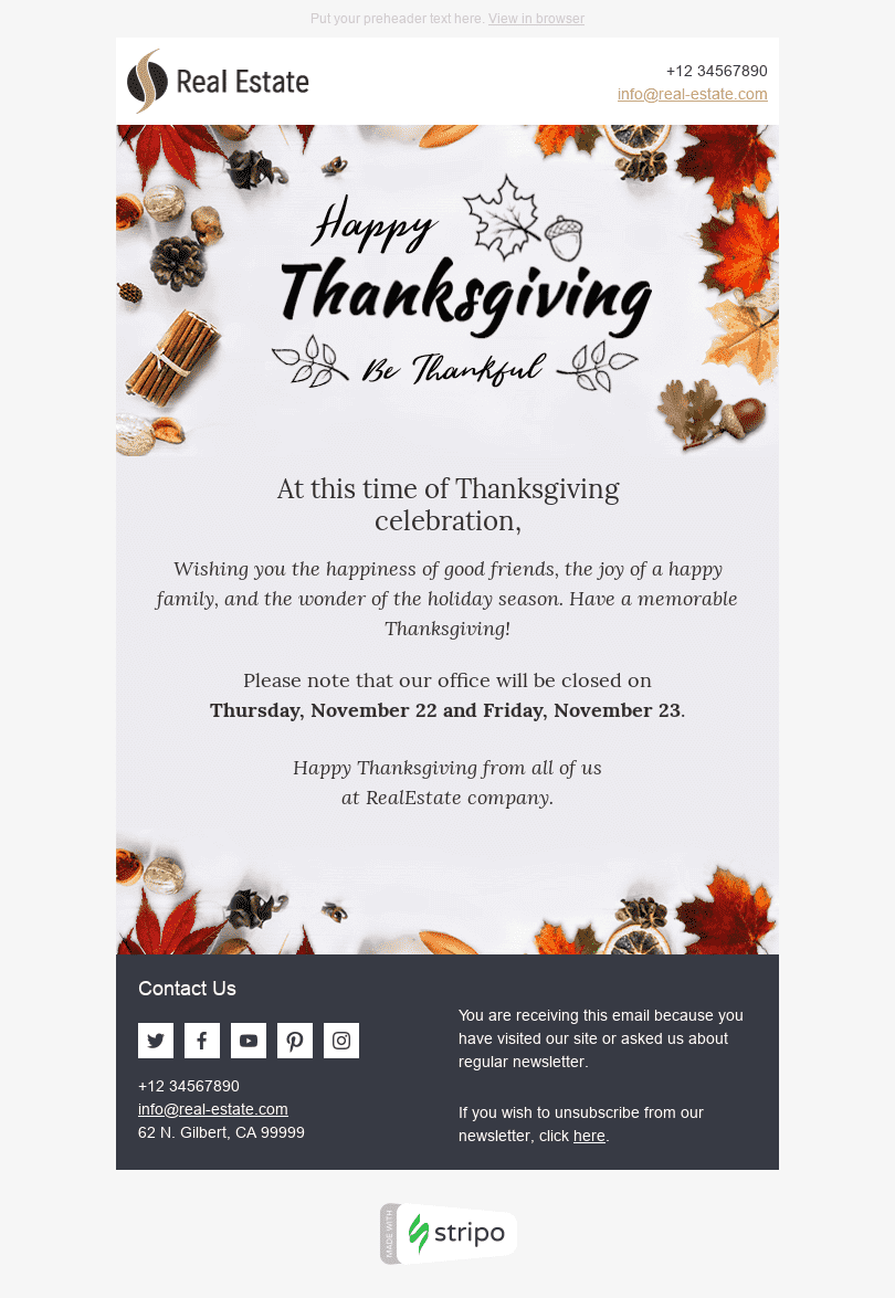 Stripo Real Estate Holiday newsletter Thanksgiving Day Wonderful Time email web