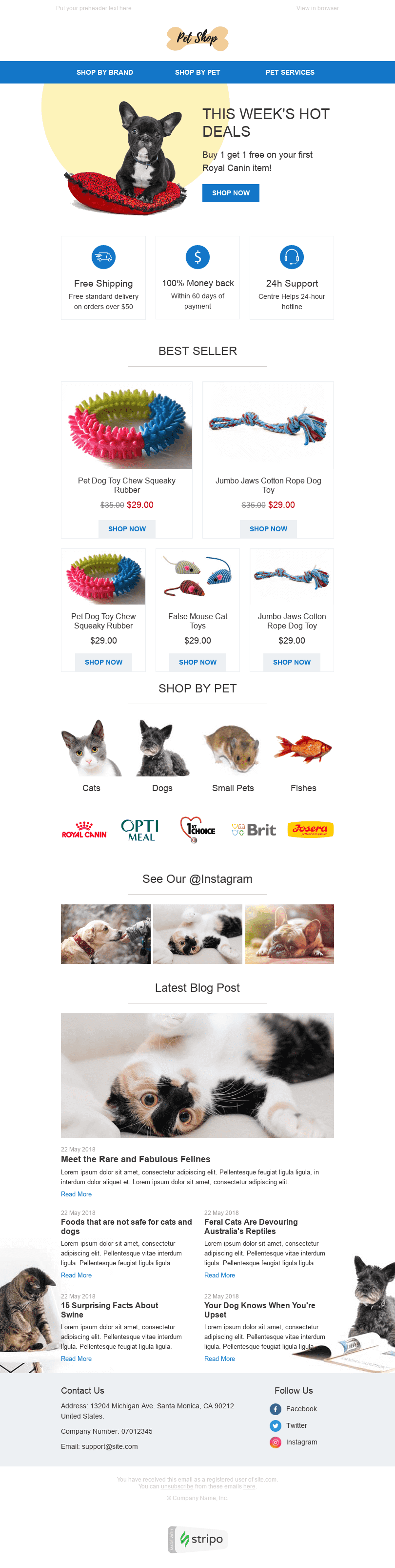 Promo Email Template «Favorite toys» for Pets industry desktop view