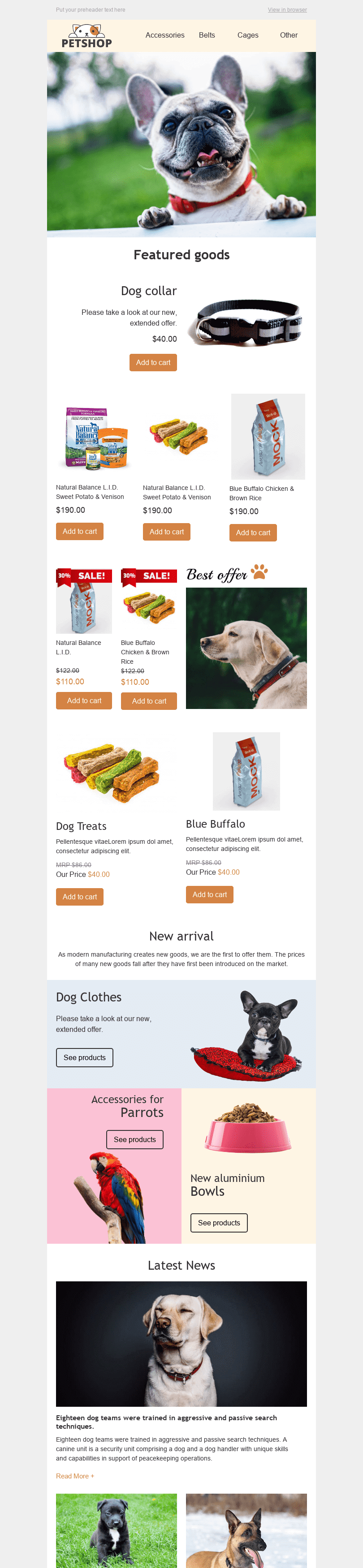 Stripo Pets Promo newsletter email web