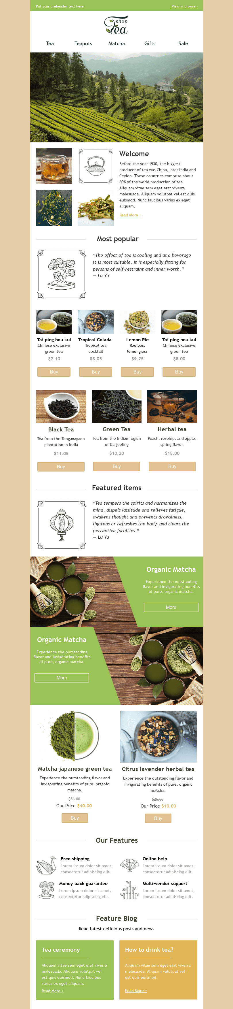"Promo Email Template ""Tea Shop"" for Beverages industry desktop view"