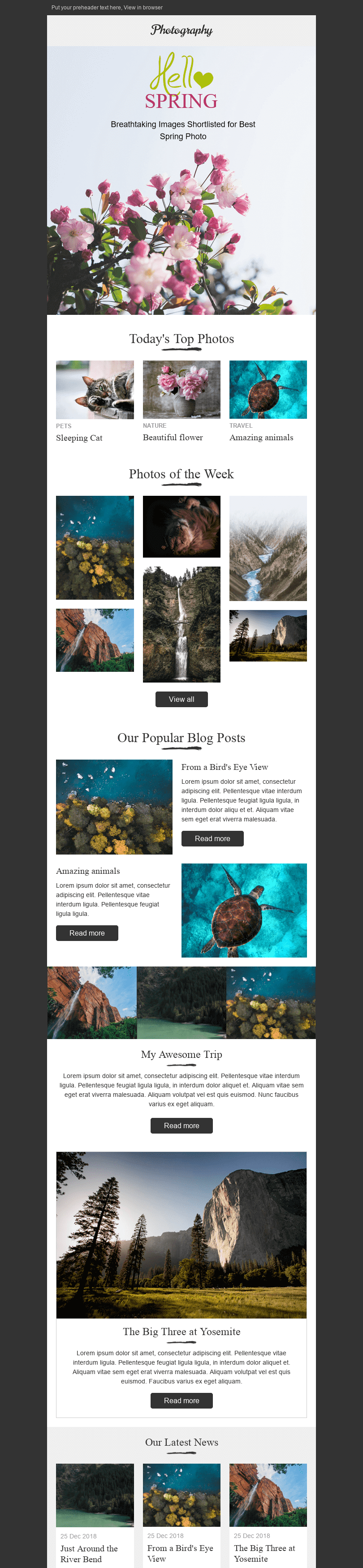 Stripo Photography Promo newsletter Amazing Nature email web