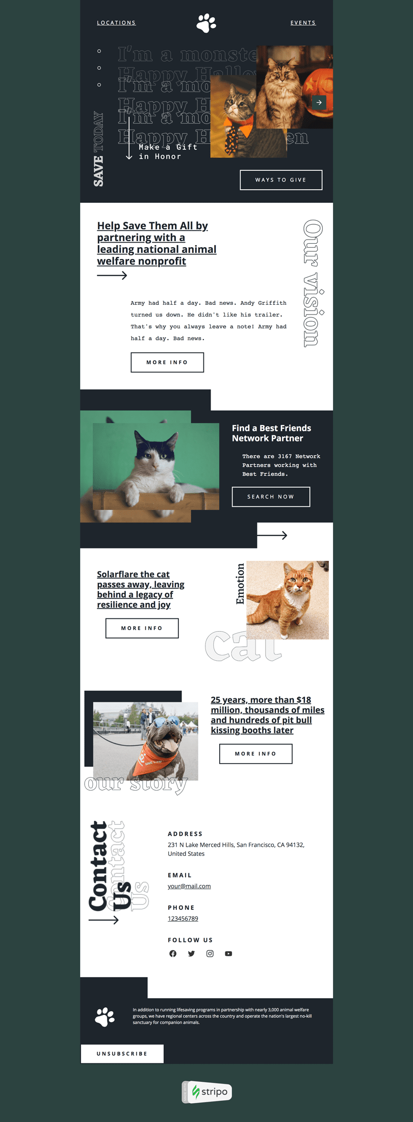 Halloween Email Template «Help From Outside» for Pets industry desktop view