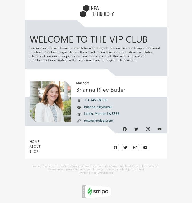 Promo Email Template «Vip club» for Software & Technology industry desktop view